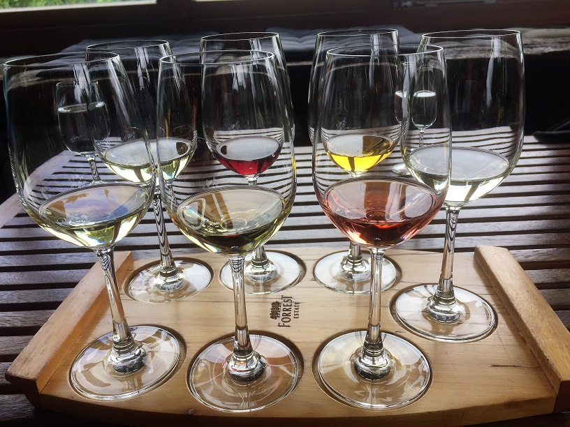 wine glasses with different taster wines in